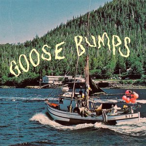 Image for 'Goose Bumps'