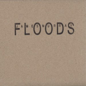 Image for 'Floods'