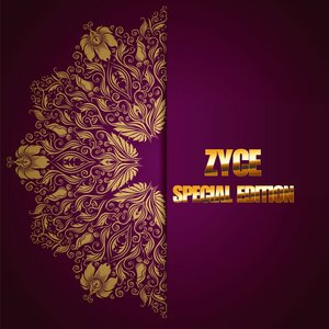 Image for 'Zyce Special Edition'