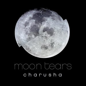 Image for 'Moon Tears'