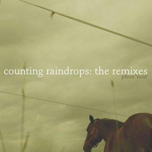 Bild für 'counting raindrops: the remixes'