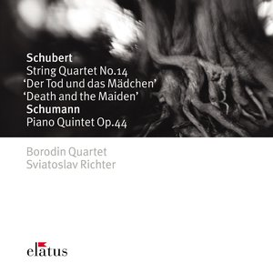 Image for 'Schubert : String Quartet No.14 in D minor D810, 'Death and the Maiden' : II Andante con moto'