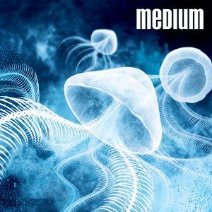 Image for 'Medium'
