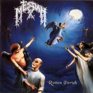 Image for 'Rotten Perish'
