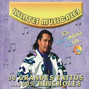 Image for '30 Grandes Exitos... 100% Huicholes'