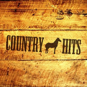 Immagine per 'Country Hits'