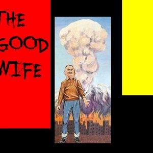 Bild för 'The Good Wife'