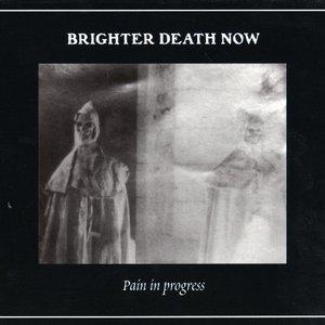 Bild för 'Pain In Progress'