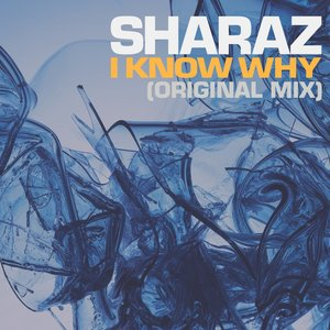 Image for 'I Know Why'
