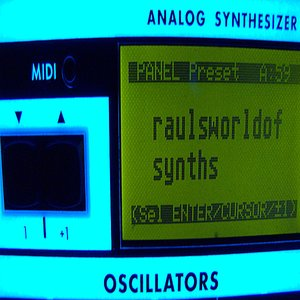 Image for 'Raul's World of Synths'