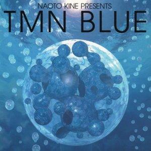 Image for 'NAOTO KINE PRESENTS TMN BLUE'