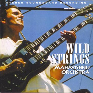 Image for 'Wild Strings'