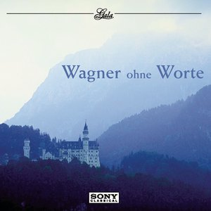 Image for 'Wagner ohne Worte'