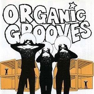 Image for 'Organic Grooves 4- Live in NYC'