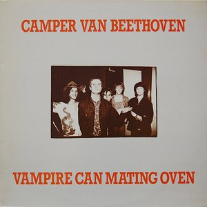 Image for 'Vampire Can Mating Oven'