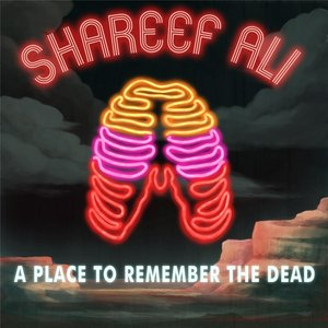 Image for 'A Place to Remember the Dead'