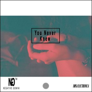 Image for 'You Never Knew'