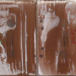 Image for 'Sensible Nectar/Spermwhales split cassette'