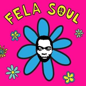 Image for 'Fela Soul Instrumentals'