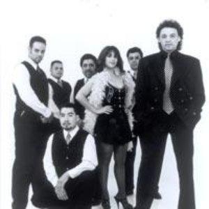 Image for 'Los Terricolas'