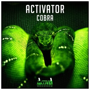 Image for 'Cobra (Extended Mix)'