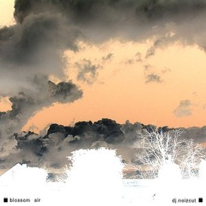 Image for 'blossom air'