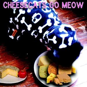 Bild för 'Cheesecats Go Meow'