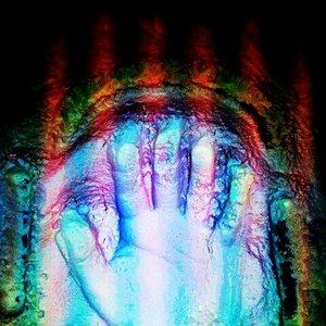 Bild für 'Flash Hand'