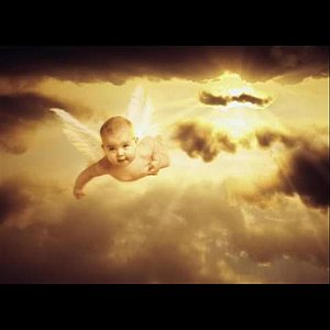 Image for 'Baby Caylee Fly Away'