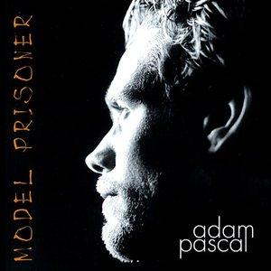 Image for 'Model Prisoner'