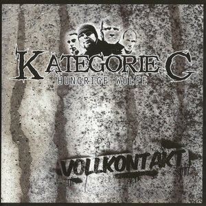 Image for 'Vollkontakt'