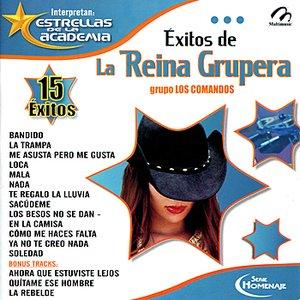 Image for 'Éxitos de La Reina Grupera'
