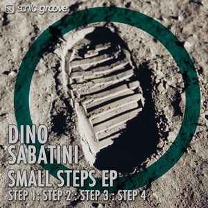Image pour 'Small Steps EP'