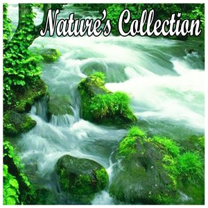 Image for 'Natures Collection-Sounds for Spa, Yoga, Sleep, Massage, Healing, Tai Chi, Meditation and Relaxation'