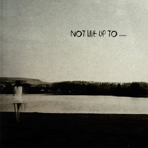 Image for 'not live up to'