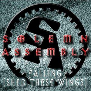 Image for 'FALLING (Original Mix)'