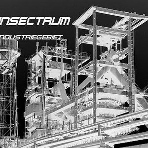 Image for 'INSECTRUM STEELHAMMER'
