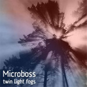 Image for 'Twin Light Fogs'