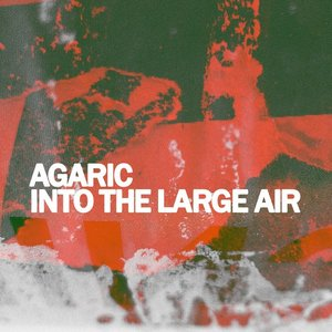 Image for 'Into the Large Air'