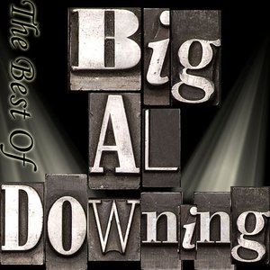 Image for 'The Best Of Big Al Downing'