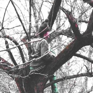 Image for 'Loose Lipped Trees and a Trip Down the River'