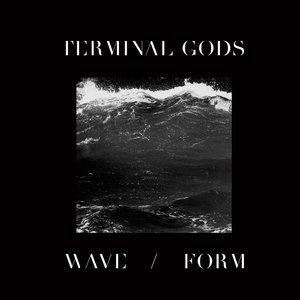 Image for 'Wave / Form'