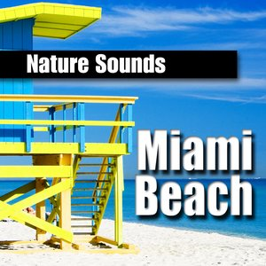 Image for 'Miami Beach, Florida Oceanside Surf for Contemplation and Meditation'