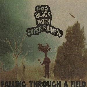 Image for 'Falling Through A Field (Reissue)'