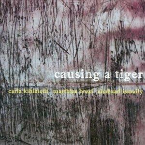 Immagine per 'Causing A Tiger'