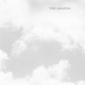 Image for 'The Amazing'