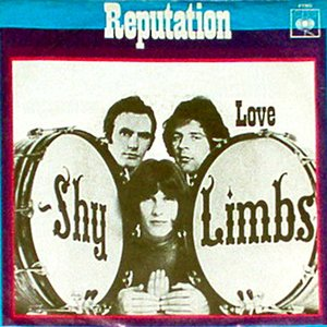 Image for 'Shy Limbs'