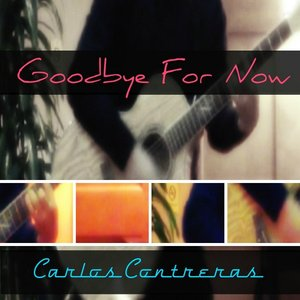 Image for 'Goodbye for Now'