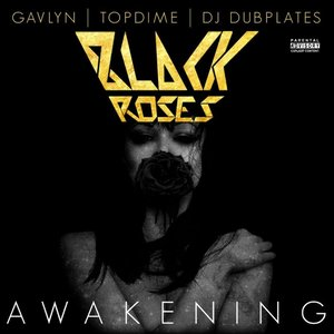 Image for 'Awakening (feat. Gavlyn, Topdime, and DJ Dubplates)'
