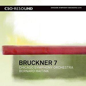 Image for 'Bruckner: Symphony No. 7'